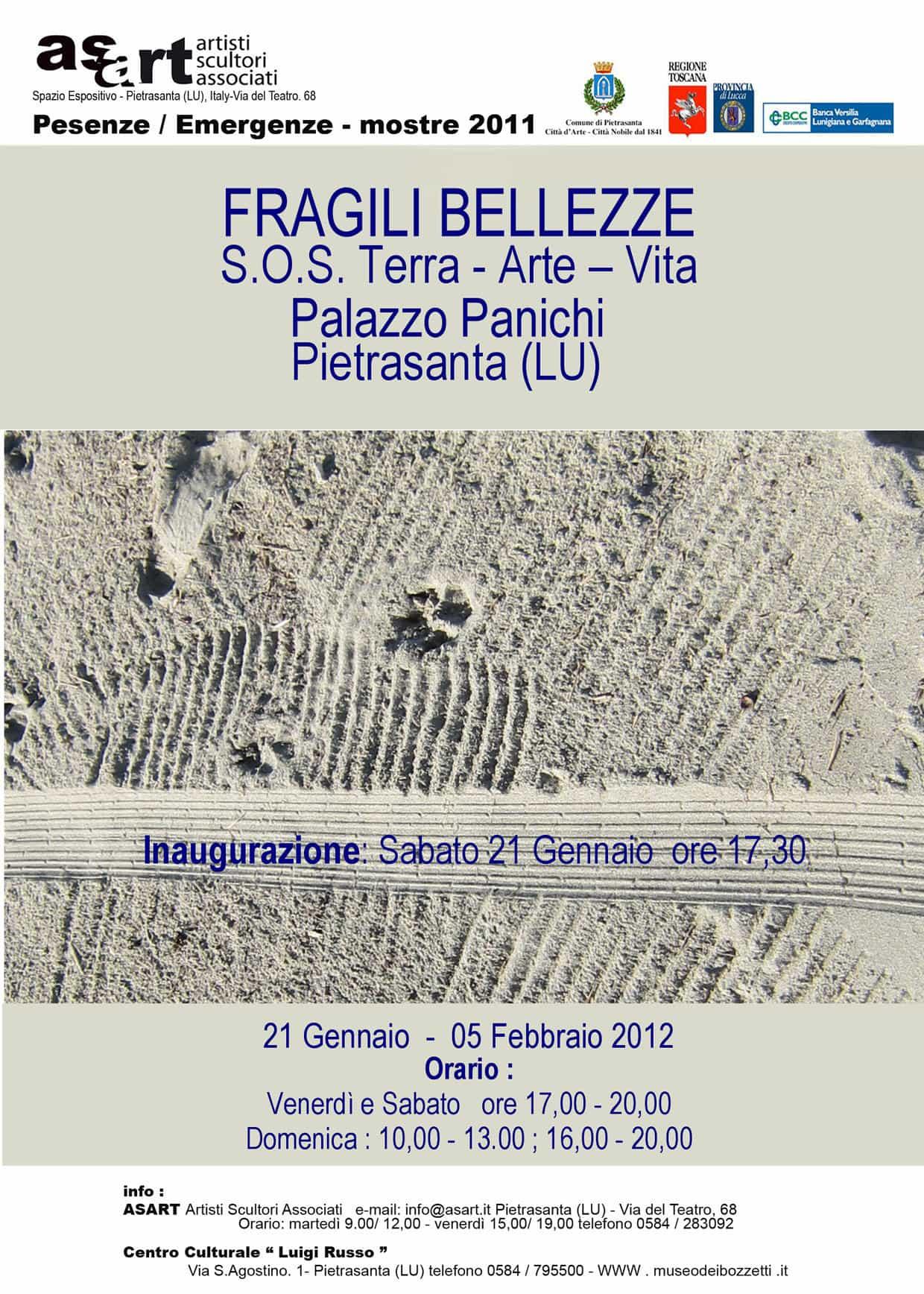 Fragili Bellezze – SOS Terra. Arte. Vita. Mostra collettiva dell' associazione ASART, Palazzo Panichi, Pietrasanta, Italia, gennaio – febbraio 2012